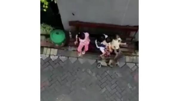 Viral, Monyet Serang dan Seret Bocah Saat Pertunjukan Topeng