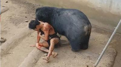 Un hombre quiso bromear con un oso hambriento y casi termina devorado por el animal