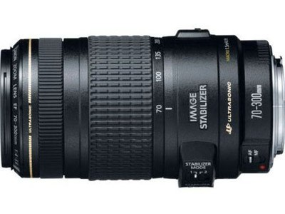 Canon EF 70-300mm f/4 - 5.6 IS USM Lens