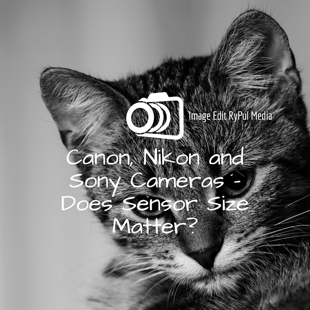 Canon, Nikon and Sony Cameras - Does Sensor Size Matter?