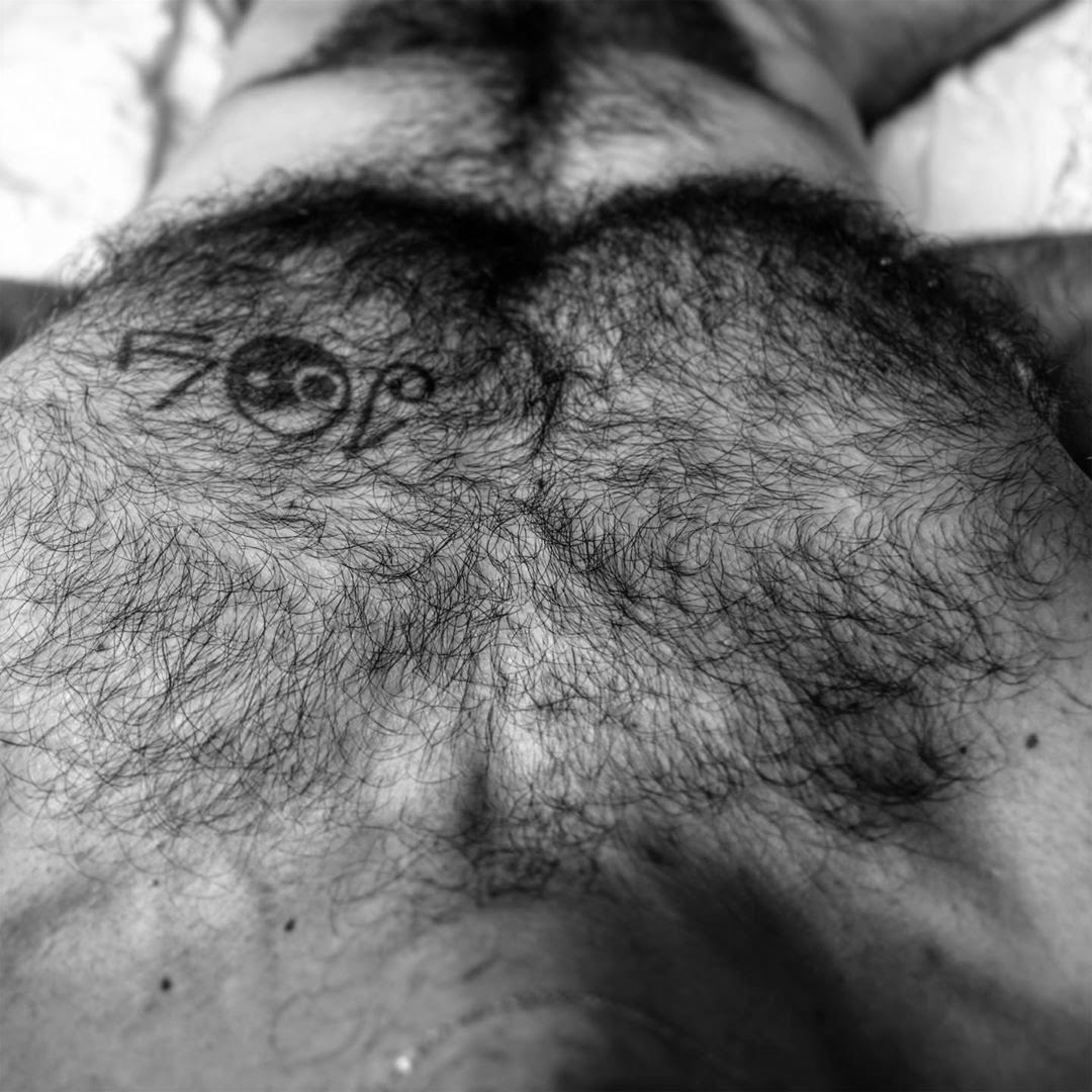 the HairY ChesT, by The Hairy Muse.