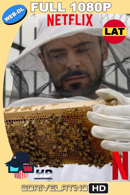 Zac Efron: Con los Pies Sobre la Tierra (2020) NF Temporada 01 WEB-DL FULL 1080p Latino-Ingles MKV