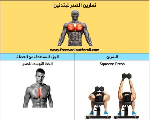 تمارين الخط الاوسط للصدر