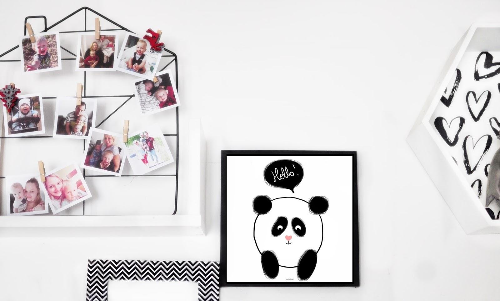 plakat-panda-hello