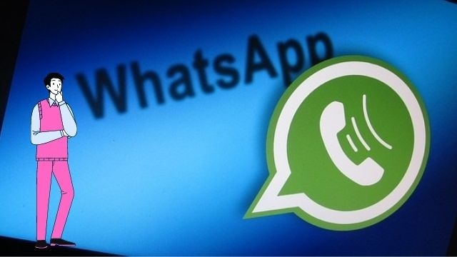 Tell Any Problems Related to WhatsApp Directly to the Company