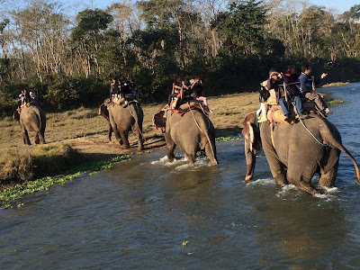 Chitwan_National_Park,Top_Tourist_places,nepal_kathmandu_tourist_places.jpg