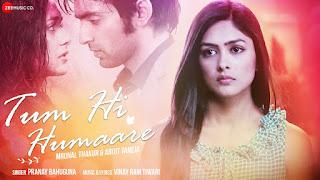 Tum Hi Humaare Lyrics - Pranay Bahuguna