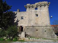 Kaštel Cerinić-Cerineo, Škrip, otok Brač slike