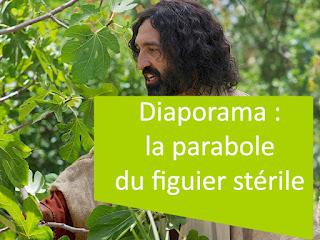 Diaporama : la parabole du figuier stérile