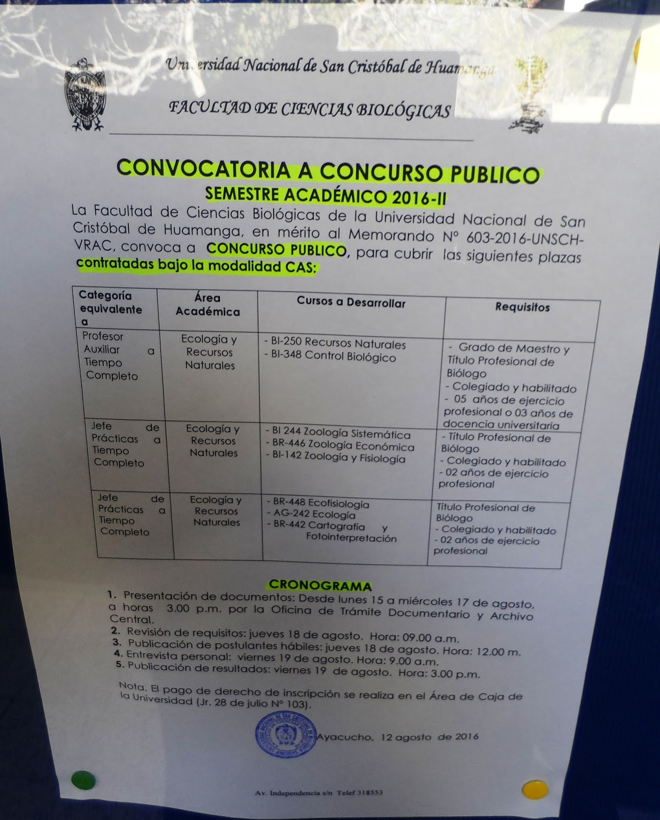 Quehacer universitario fcb unsch convocatoria 3 docentes for Convocatoria plazas docentes 2016