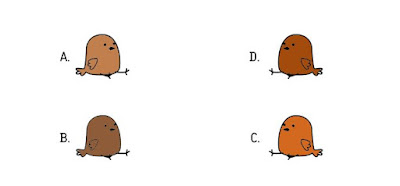 Alt 2 Q 12. Which color bird ate a cherry?