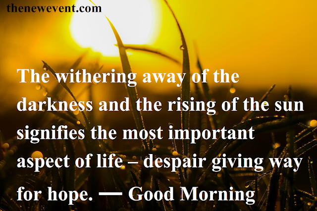 Amazing Good Morning Quotes Pic, Photos, Images, status