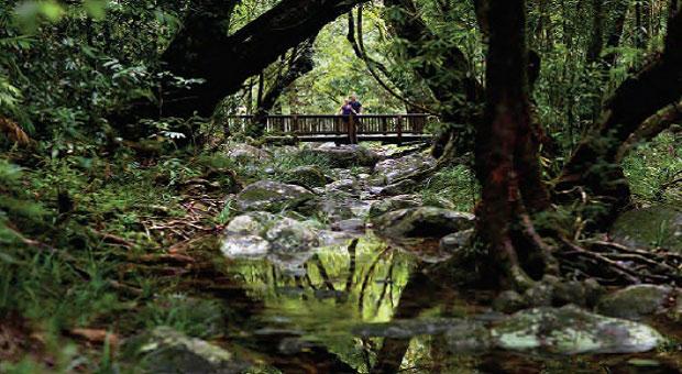 Explores of Queensland's Natural Gems