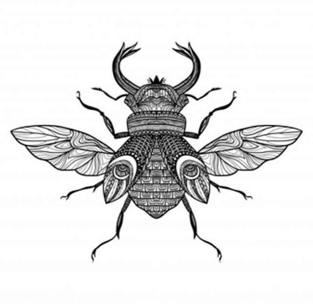 رسم ذبابة بفن الزنتانجل zentangle