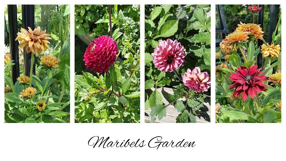 Maribels Garden