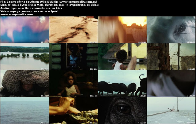 Beasts of the Southern Wild DVDRip Español Latino Película 2012