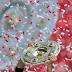 Campeões do Campeonato Alemão (Bundesliga e pré-Bundesliga)