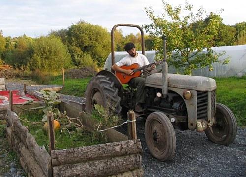 Con el WWOOFing en Nueva Zelanda trabajaremos como voluntarios en una granja