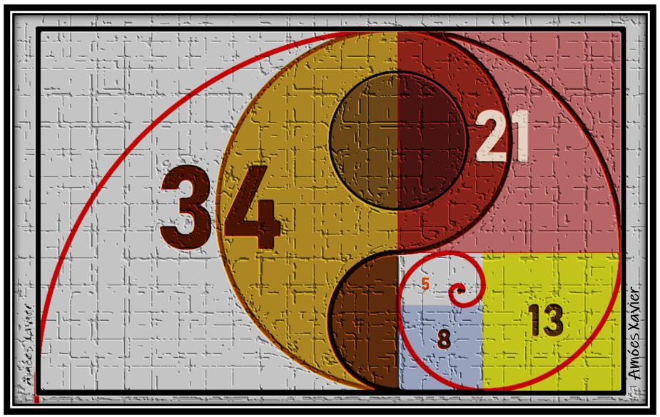Sequência de Fibonacci e Arte