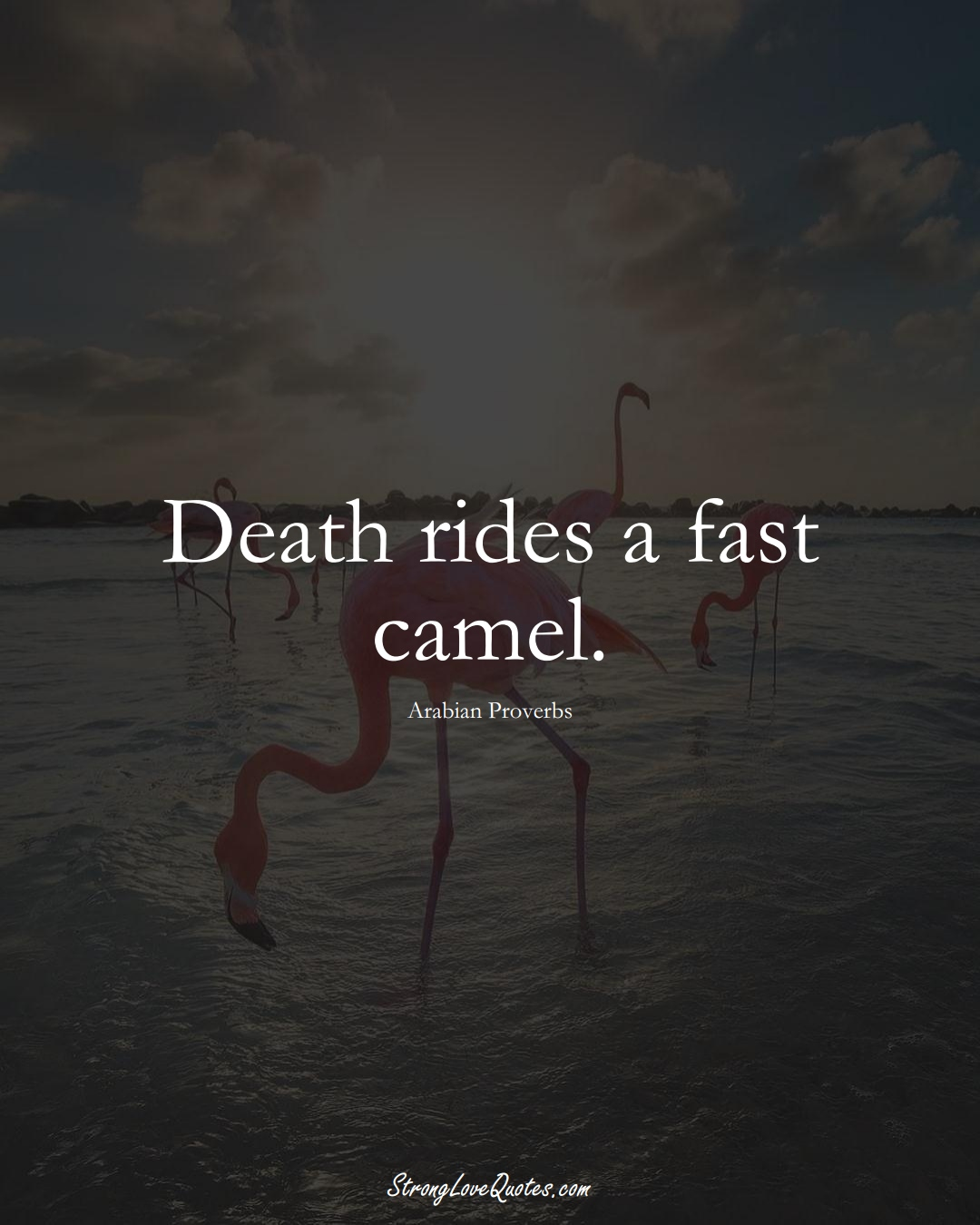 Death rides a fast camel. (Arabian Sayings);  #aVarietyofCulturesSayings