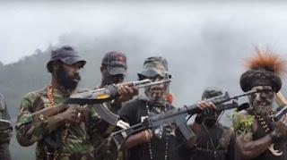 Jalan berliku pejuang Papua, dari OPM hingga teroris