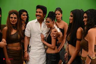 Akkineni Nagarjuna Ramya Krishnan Anushka Shetty Lavanya Tripathi Starring Sokkali Mainar Movie Stills  0022.jpg