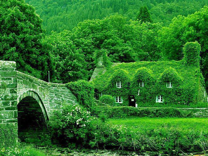 Fairytale Cottages England