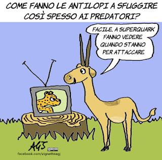 antilopi, piero angela, predatori, Superquark, umorismo, tv, spettacolo, vignetta