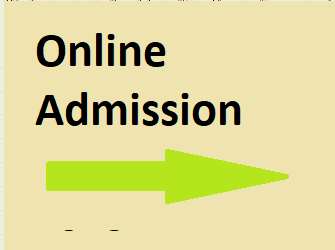 pune.11thadmission.org.in