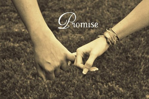 Image result for a promise made