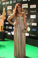 Telugu Actress Aarthi in Deep Neck Backless Golden Gown at IIFA Utsavam Awards 2017 Exclusive 51.JPG