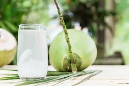 Manfaat kelapa untuk kesehatan tubuh
