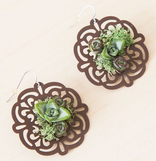 How To Make Real Living Succulent Jewelry