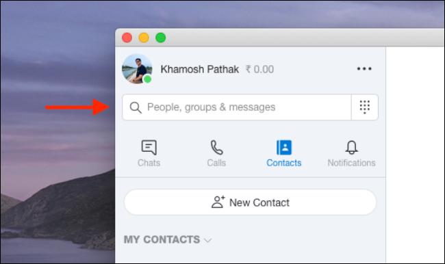 اكتب معلومات جهة اتصال في حقل البحث على Skype.