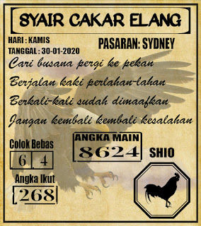 SYAIR SYDNEY 30-01-2020