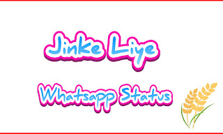 Jinke Liye Neha Kakkar whatsapp status