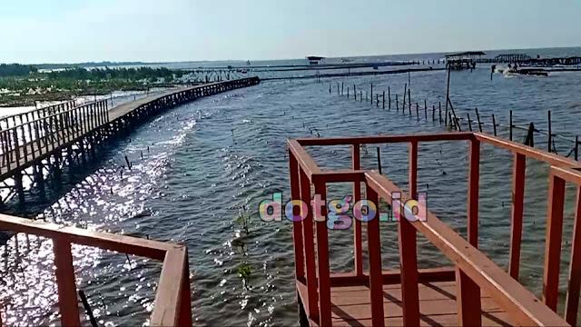 Wisata Pantai Karawang Eco Wisata mangrove Hutan Bakau di Pasir Putih Karawang Cilamaya
