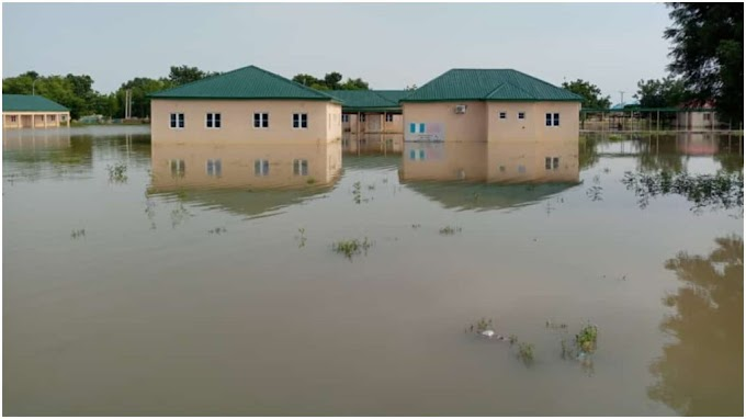 Flood kills five, takes over LG secretariat... displaces corps members in Jigawa