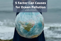 5 Factor Can Causes for Ocean Pollution