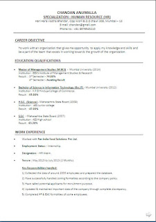 financial analyst resume sample free download - Financial Analyst Resume Examples
