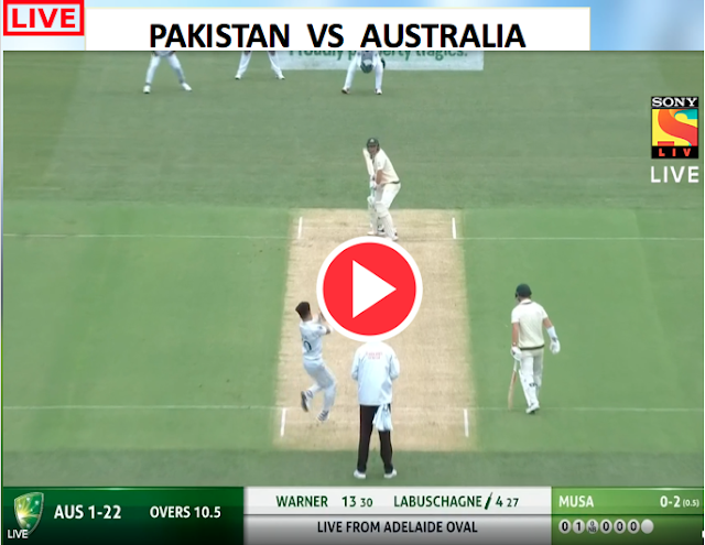 WATCH MATCH 2:  Australia v Pakistan, 2nd Test (D/N) | November 29, Warner Scored ton.