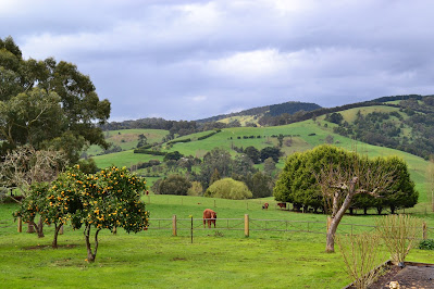 Gippsland, Victoria, home of 'The Paper'
