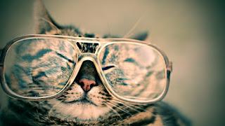 Kacamata - SELOKI.COM