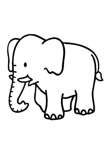 صورة فيل للتلوين