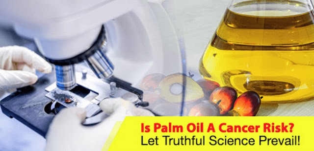 Palm Oil Cancerogenic