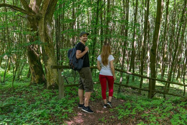 Westerwaldsteig Etappe 6 von Freilingen nach Nistertal  Westerwälder Seenplatte – Stöffelpark 15
