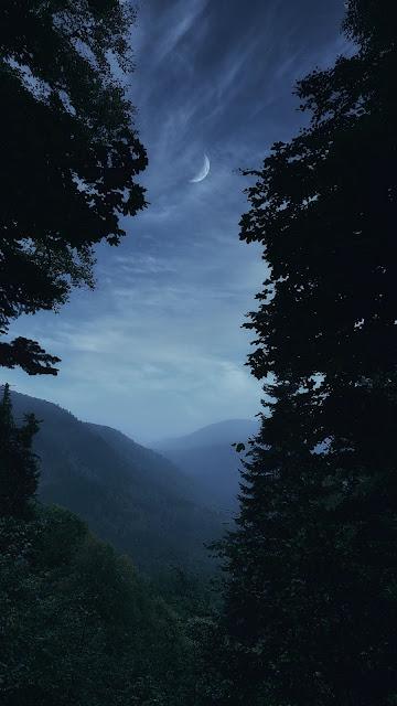 Plano de Fundo Celular Paisagem, Montanhas, Nevoeiro, Árvores, Lua.
