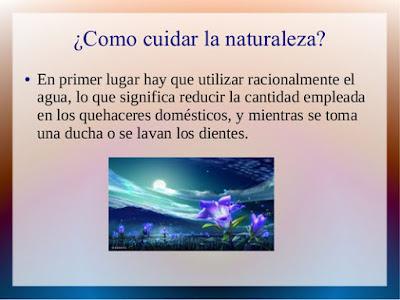 ¿Como cuidar la Naturaleza?