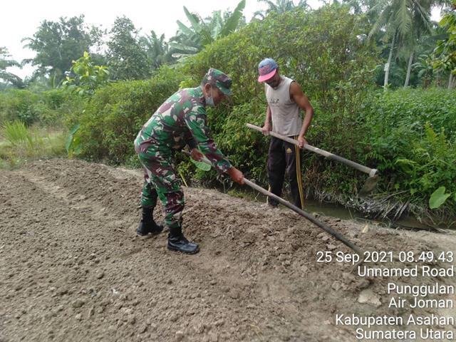 Bentuk Nyata Kerja Personel Jajaran Kodim 0208/Asahan Dalam Pendampingan Terhadap Petani Di Wilayah Binaannya