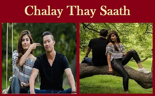 Chalay Thay Saath Movie Download